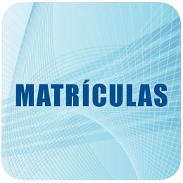 Merchandasing Matrículas Real Madrid