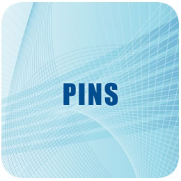 Merchandasing Pins Real Madrid